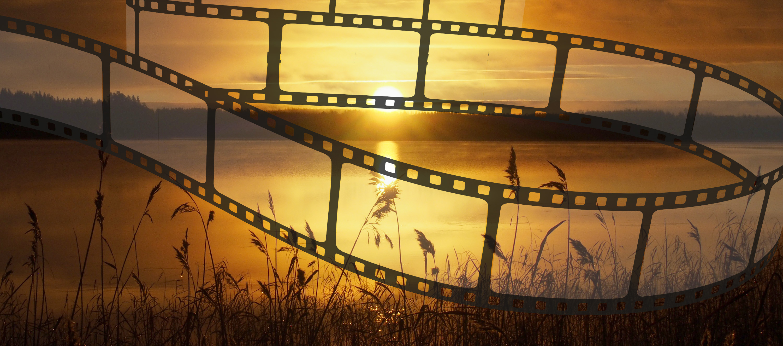 Sommerkino am Jersleber See – Achtung – Programmänderung